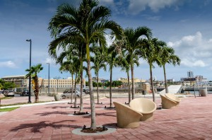 Bahia Urbana Old San Juan 03