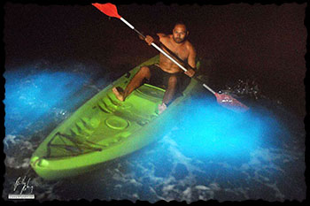 Bioluminescent Bay Tours Vieques Island