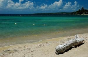 gilligan's island (guanica)4