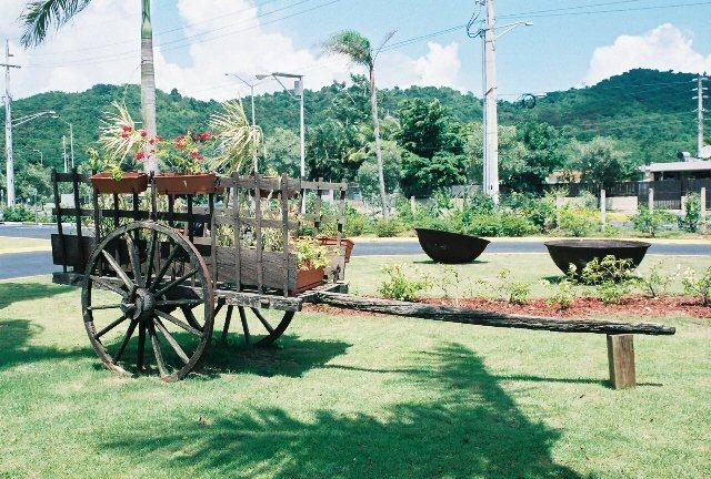 Jardin botanico caguas puerto rico for Bodas jardin botanico caguas