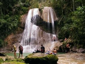 Guajataca Forest 03