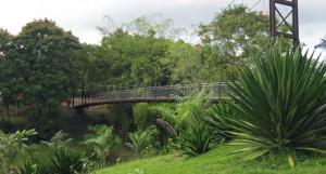 Jardin Botanico Caguas 02