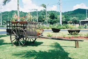 Jardin Botanico Caguas 03
