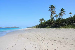 Zoni Beach2